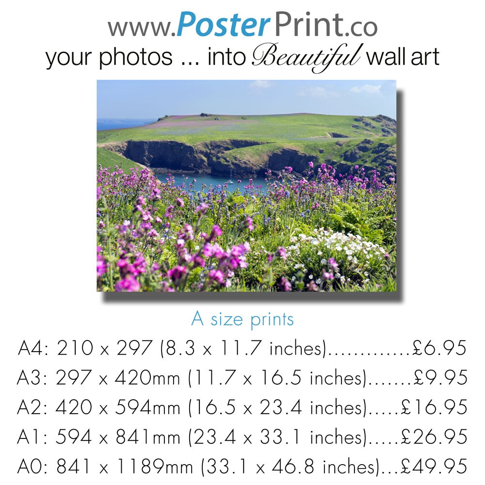 Print A0-A1-A2-A3-A4 Posters from Photos