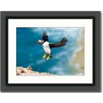 Framed photo prints - A sizes